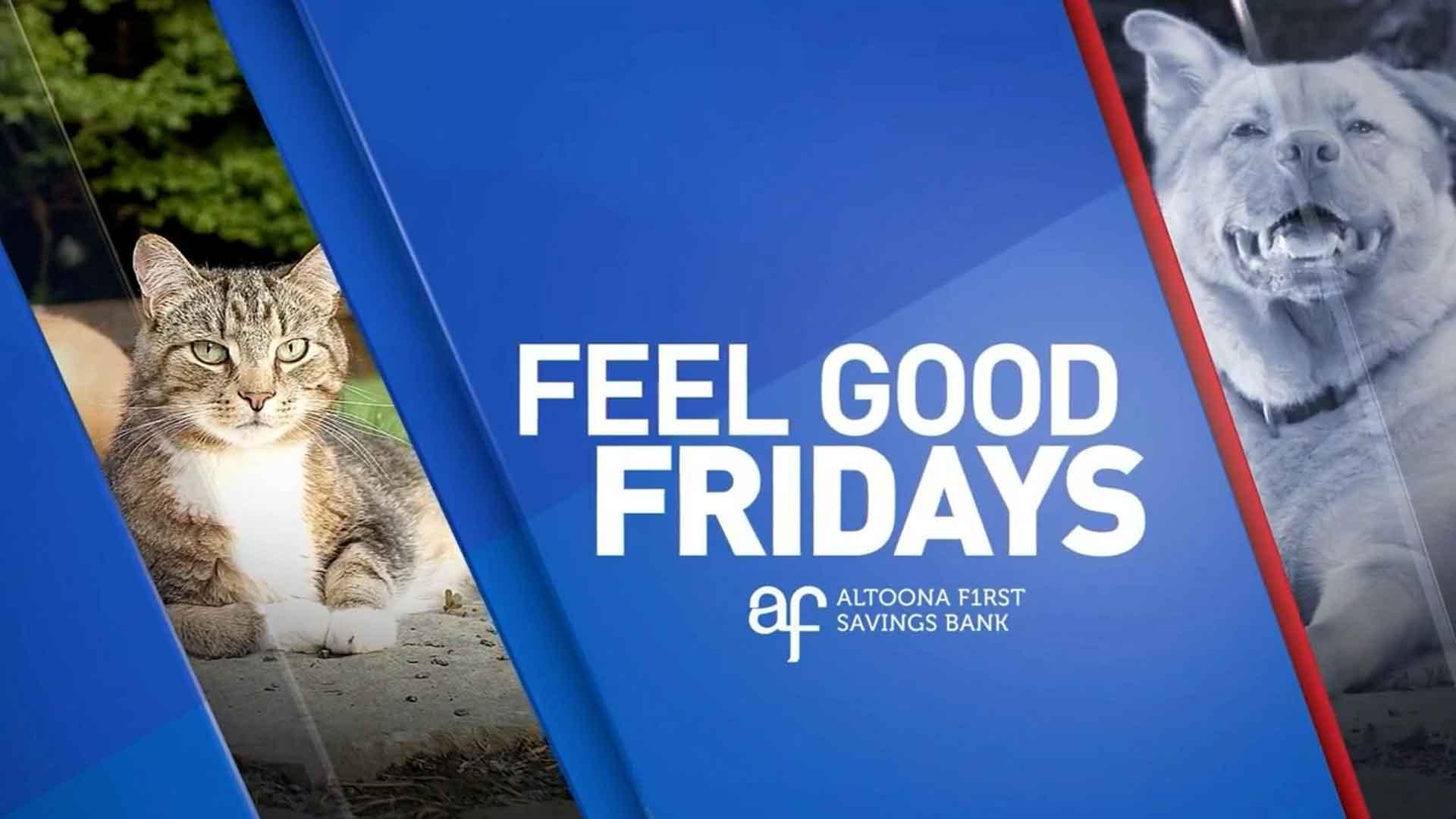 Feel Good Friday Stories